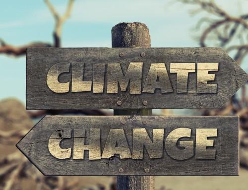 Understanding Climate Change Catastrophe